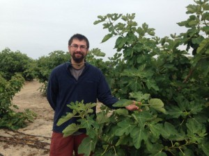 Morgan with a fig tree laden with fruit